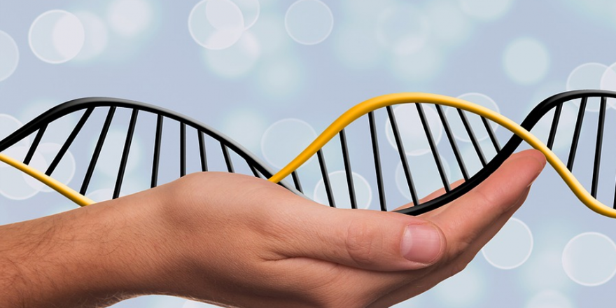 The 4 Most Common Genetic Conditions in the US 880x440 - The 4 Most Common Genetic Conditions in the US