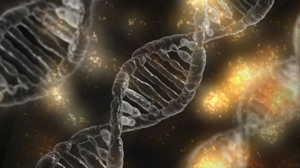 dna microscopic cell gene helix - 4 Surprising Facts We Already Know About DNA